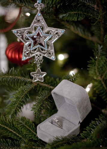 Seasons of love christmas marriage proposal tips and ring
