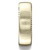 Cf717525 7 5mm satin finished rivet coin edging band