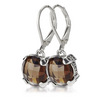 Fashion lever back silver earrings